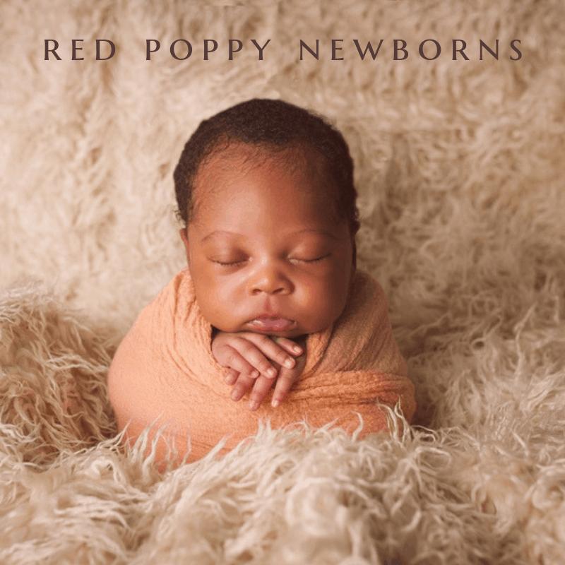 red poppy newborns (1)